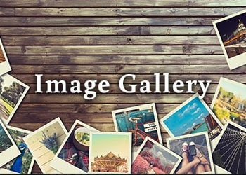 THM2G Image Gallery